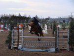 CENTRE EQUESTRE 3 RIVIERES EQUITATION 49610