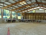 Photo CENTRE EQUESTRE DES MILLIERES