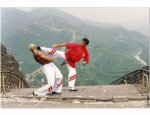 ACADEMIE NATIONALE KUNG-FU ET QI-GONG 75001