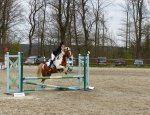 PONEY CLUB DE LA SAPINIERE 95350
