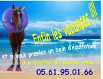 LES ECURIES DE SAINT ANNE 31800