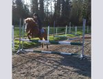 PONEY CLUB DE KERBORIOU 22300
