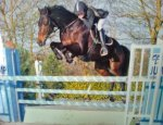 CENTRE EQUESTRE PONEY CLUB L'OXER 16110